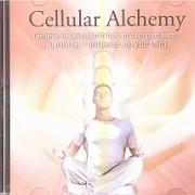 cache_240_240_0_100_100_Cellular Alchemy 1 CD