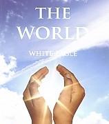 cache_240_240_0_100_100_Healing The World